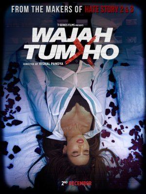 فيلم Wajah Tum Ho 2016 مترجم للكبار فقط